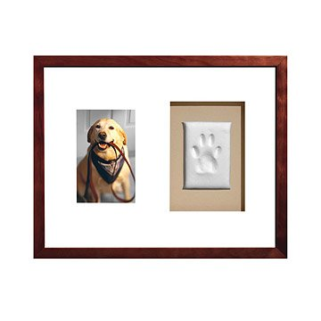 Paw Prints Keepsake Frame