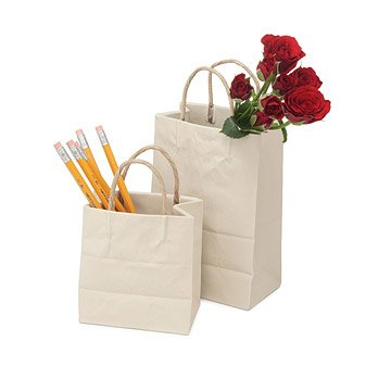Porcelain Shopping Bag Vases