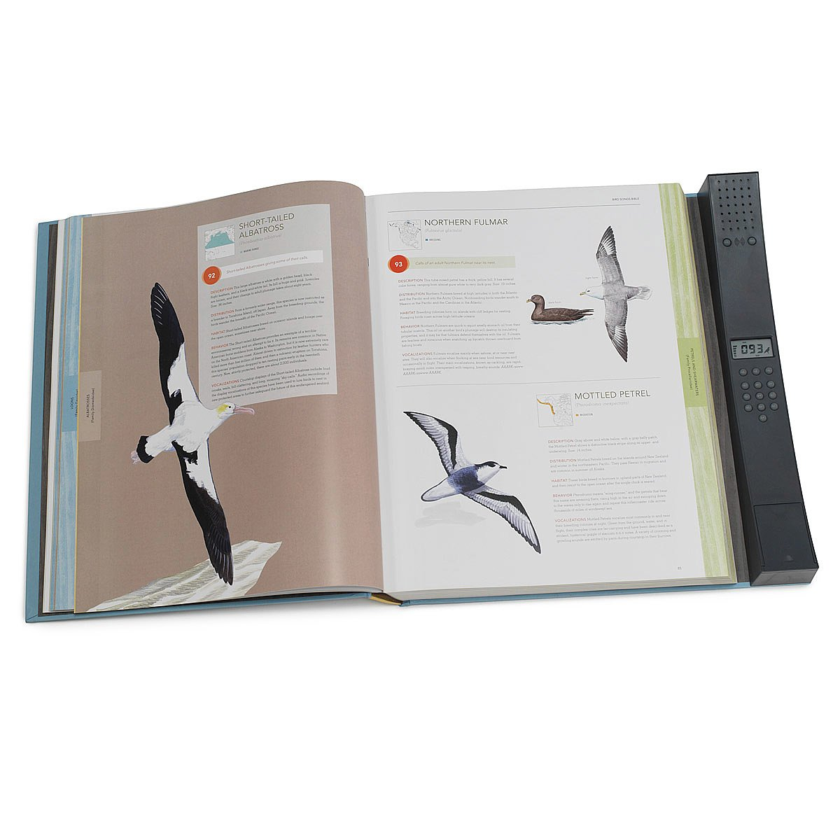 ornithology research paper