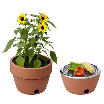 Hot Pot Barbeque
