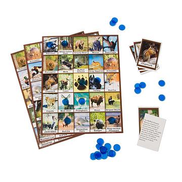 Wildlife Bingo
