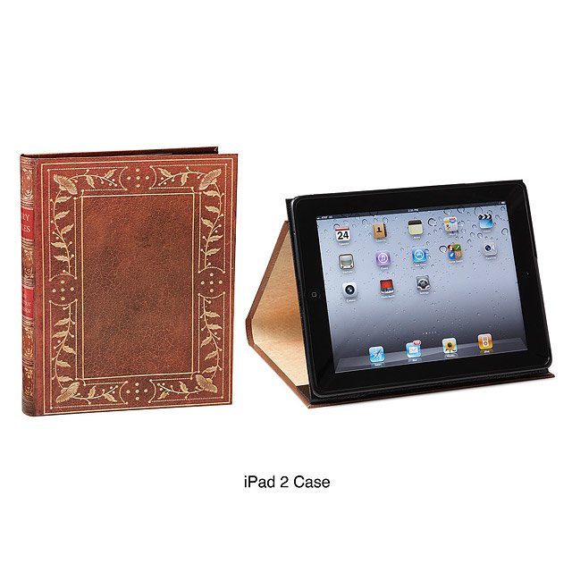 Ipad & Kindle Book Case - Fairy Tales 4
