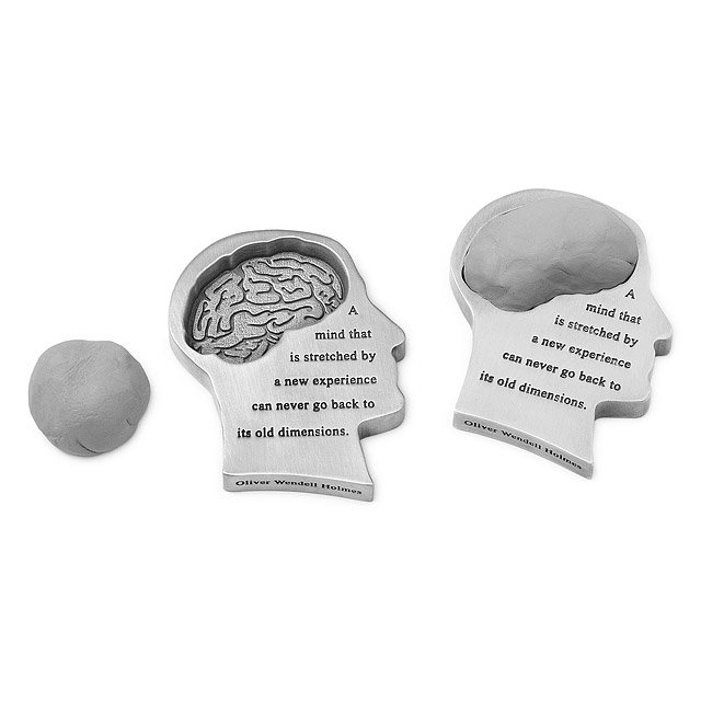 Mind Stretched Paperweight