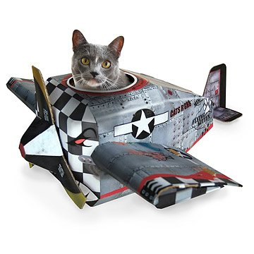 Airplane Cat House