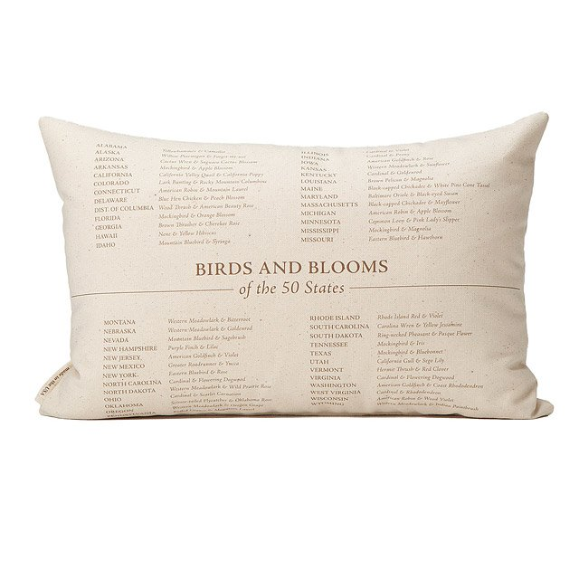 Birds and Blooms Pillows - US Map 2