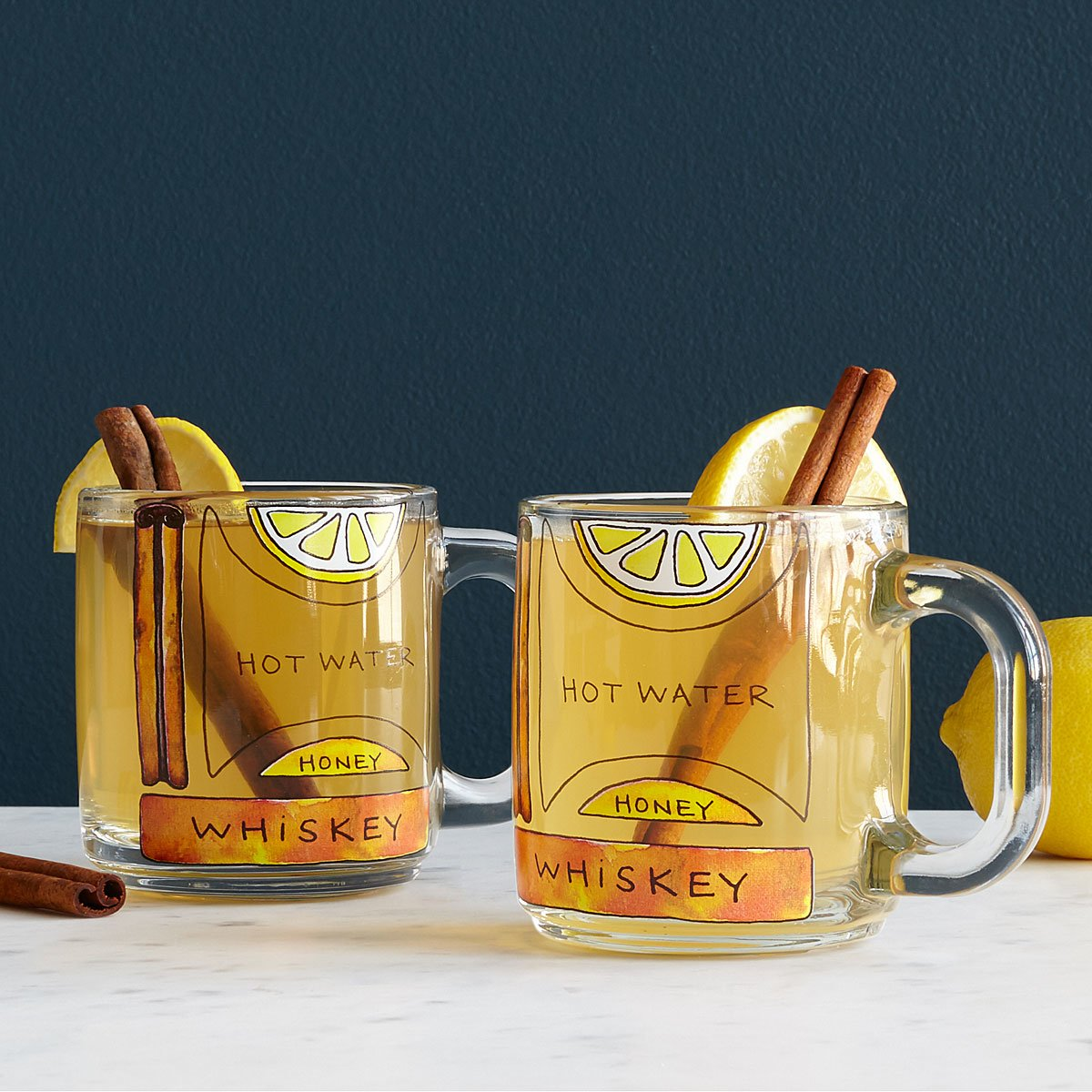 Hot Toddy Diagram Glassware - Set of 2   glass mugs   UncommonGoods