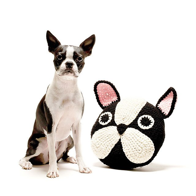 French Bulldog Pillow 2