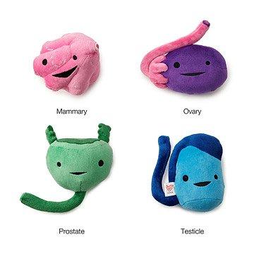Reproductive Plush Organs