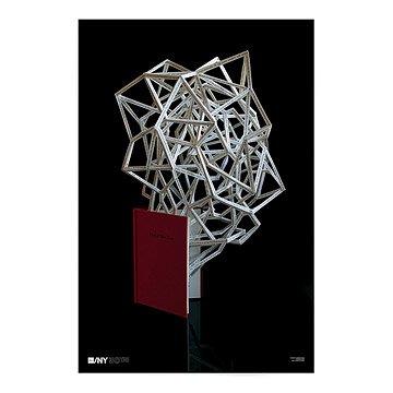 AIGA/NY 30th Anniversary Poster - Stephen Doyle