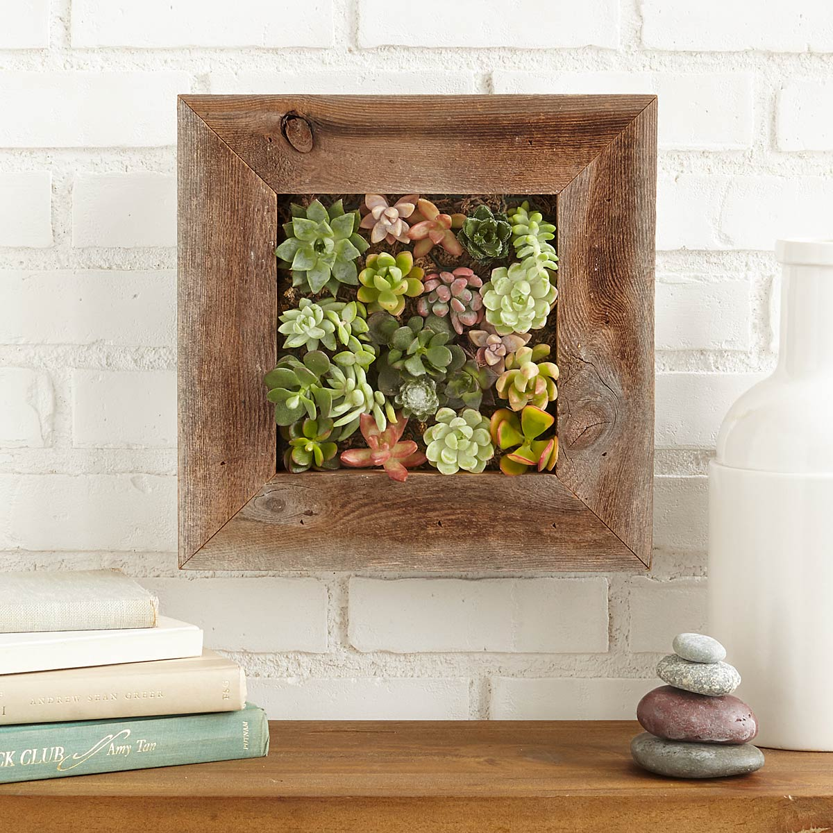 Succulent living wall planter kit vertical container - How to make a living wall ...