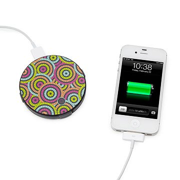 Universal Gadget Charger