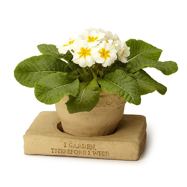Flower Pot Book Saucer Stack 2