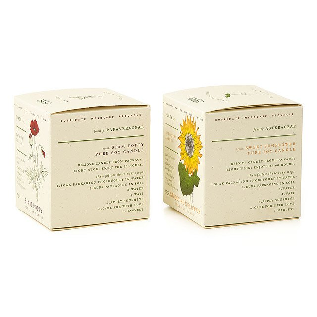 Plant the Packaging Floral Candles 2