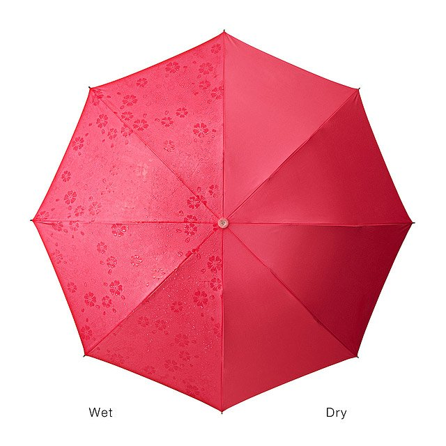 Blossom Umbrella