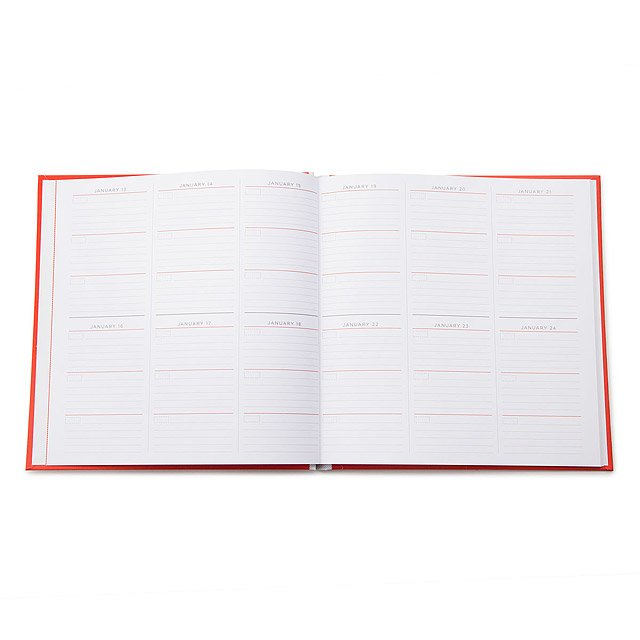 Custom One Line a Day Journal 4