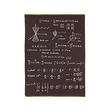 Math Dish Towel