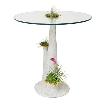 Talus Side Table