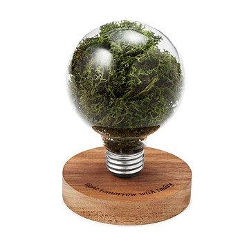 Moss Light Bulb Sculpture