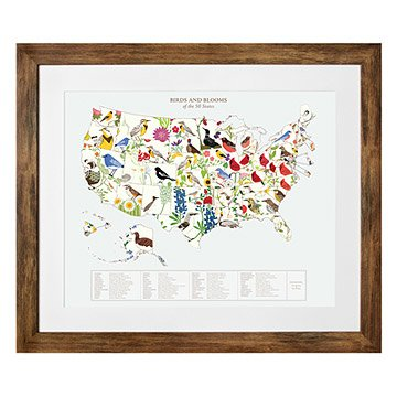 Birds and Blooms Art - U.S. Map