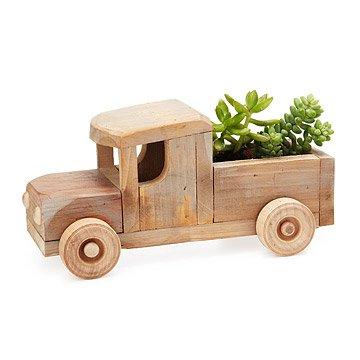 Rustic Truck Succulent Planter Kit
