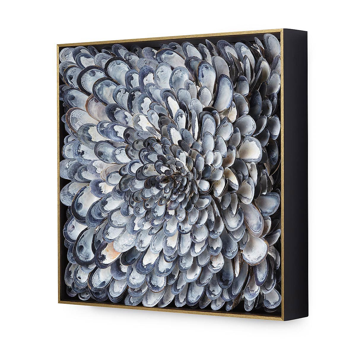 susie macmurray - mussel shell installation (detail) - Pictify ...