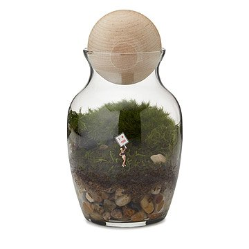 Love Grows Here Terrarium
