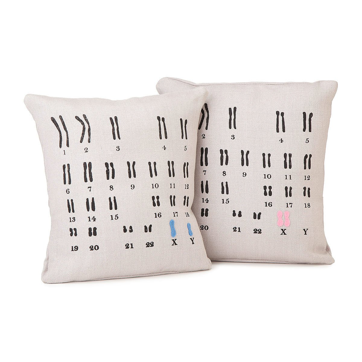Fun Chromosome Pillow Set