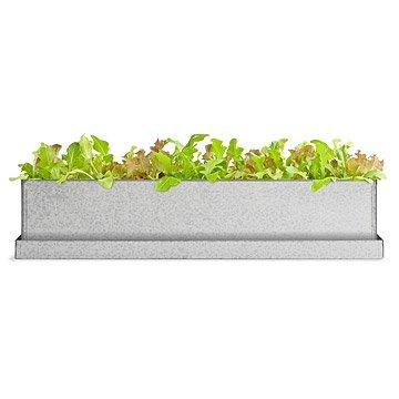 Gourmet Lettuce Windowsill Growbox Lettuce Seed, Lettuce Seeds, Salad Greens, Lettuce, Lettuce Mix, Mesclun, Garden Seeds, Salad Seeds
