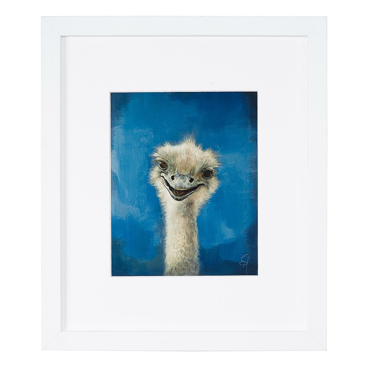 Otto - Ostrich Portrait