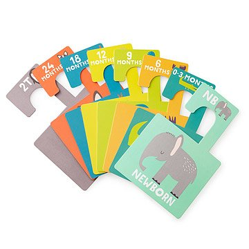 Little Animal Lover Closet Dividers