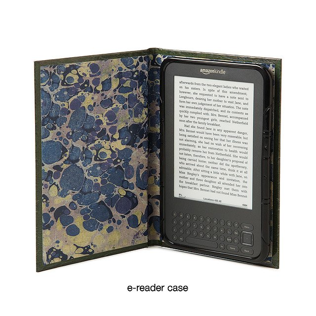 Ipad & Kindle Book Case- Theory Of Relativity 2