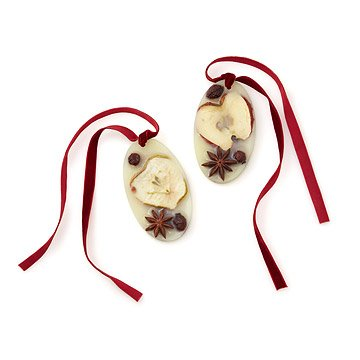 Botanical Wax Sachet Spicy Apple - Set of 2