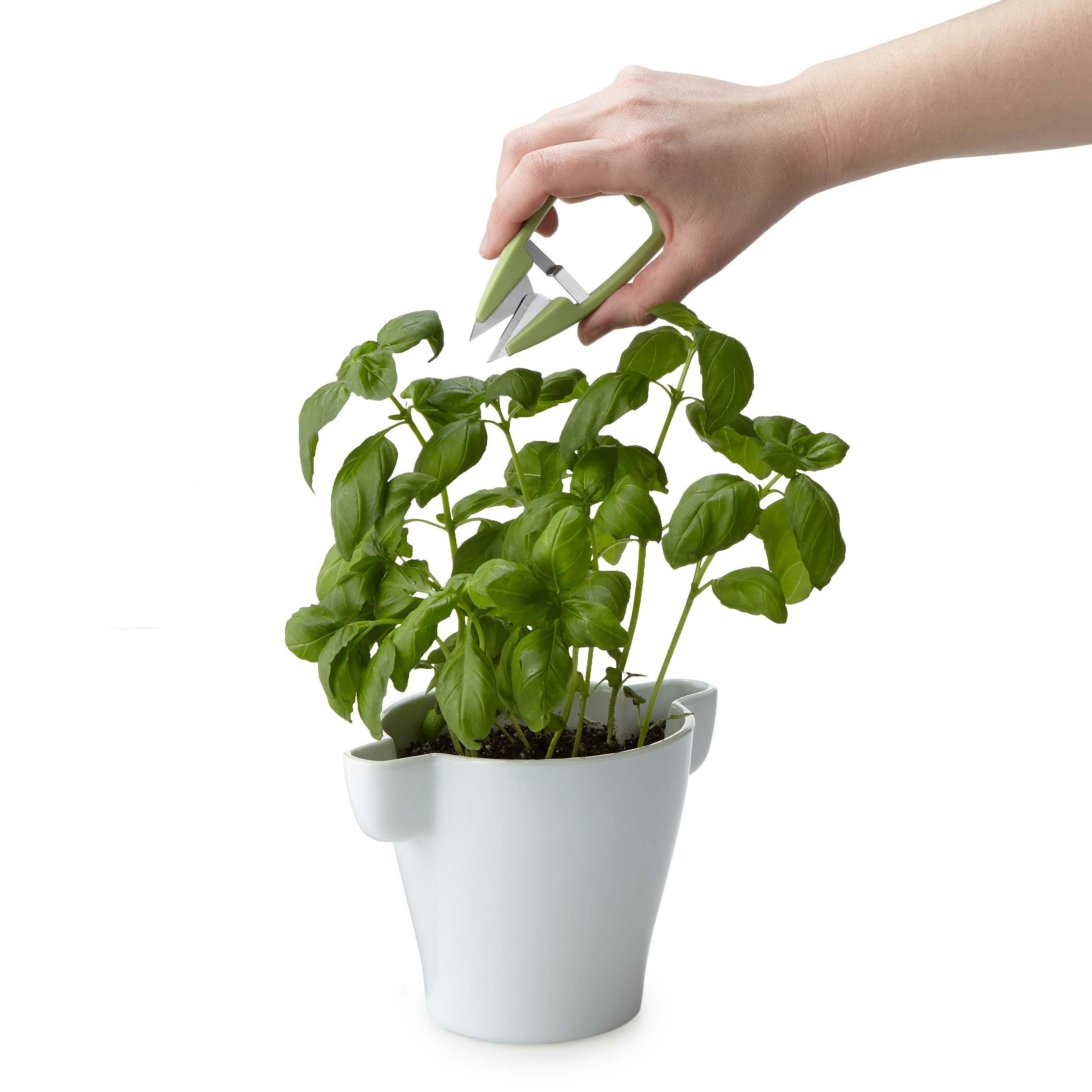 Herb Pot & Snip Set