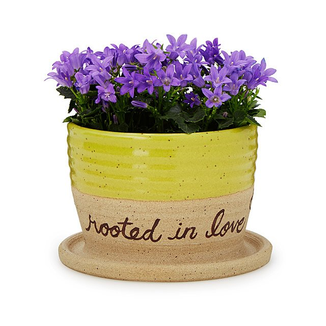 Rooted in Love Planter
