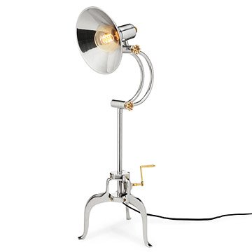 Einstein Table Lamp