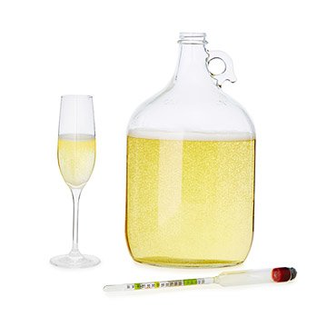 Sparkling Wine Making Kit