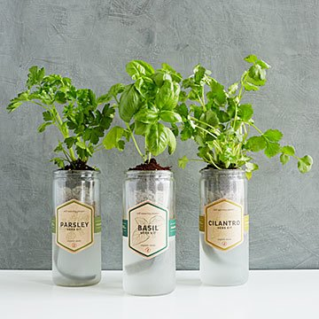 Kitchen Essentials Herb Planter