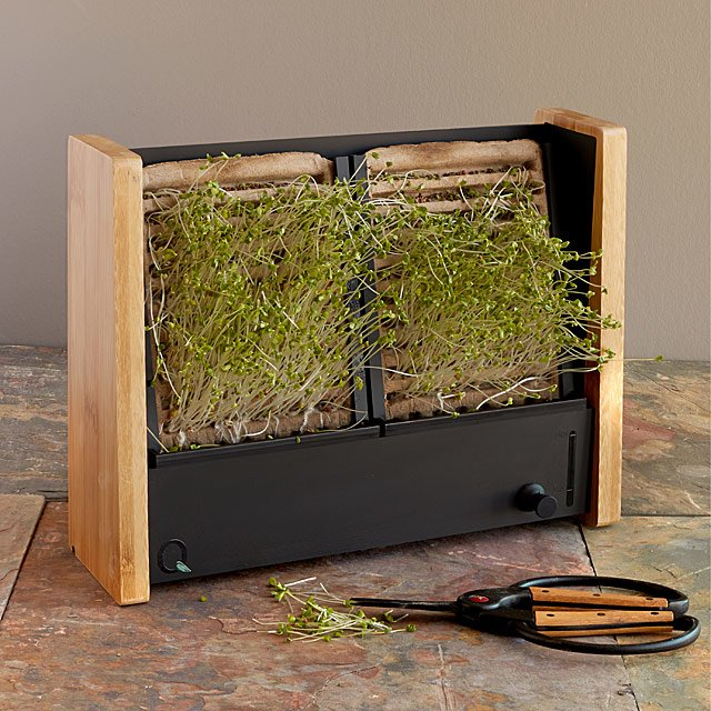 Microgreen Vertical Garden by Andrew Hung &Amp; Kevin Liang