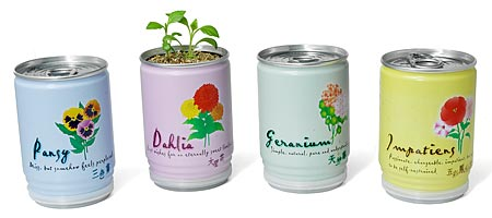 Flowers in a Can  :  uncommongoods flowers in a can impatients pansy