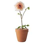 BUD VASE | Vase, Flowers, Bud, Terra Cotta | UncommonGoods