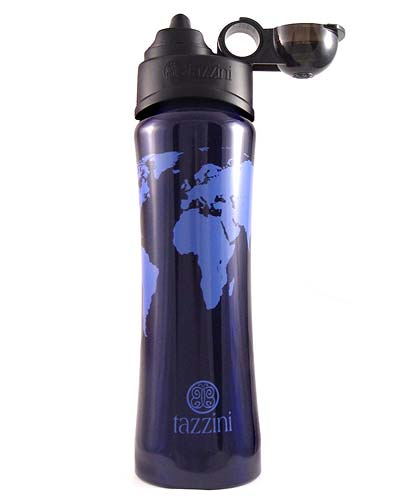 MAP OF THE WORLD STAINLESS WATER BOTTLE