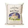 Personalized Storybook Pillow - Legend
