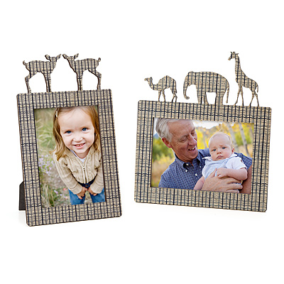 DEER AND SAFARI PICTURE FRAMES