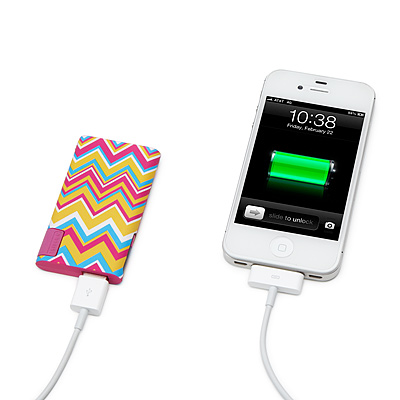 UNIVERSAL GADGET CHARGER SLIM