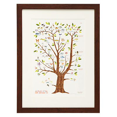 A STORY OF LIFE AROUND US- JENNIFER BERLINGER