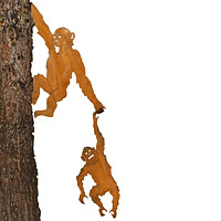 Tree Hugger Chimps - Set of 2