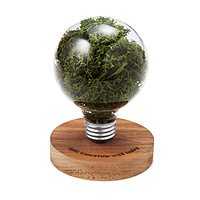 Moss Light Bulb Sculpture