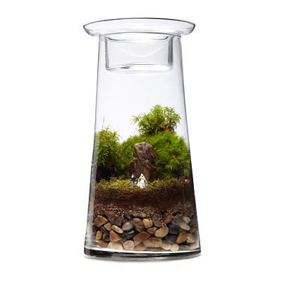 OUR WEDDING - TERRARIUM CENTERPIECE DIY KIT