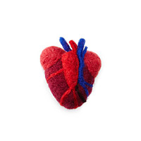 Anatomical Heart Needle Felting Kit