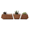 Boxcar Planter Set